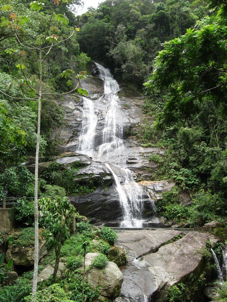 Parc national de Tijuca