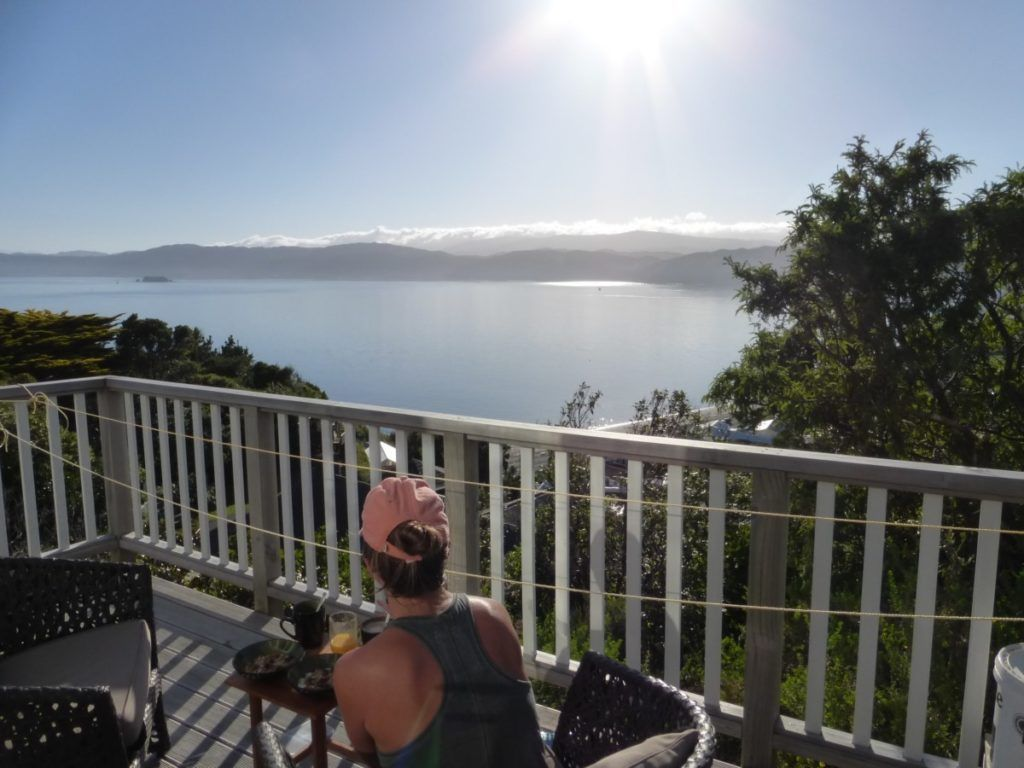 Voyage en Nouvelle-Zélande avec bébé Wellington