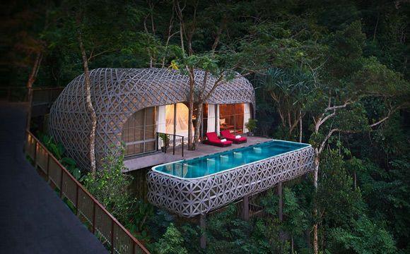 weekend-piscine-arbre-amoureux-echange-de-maison