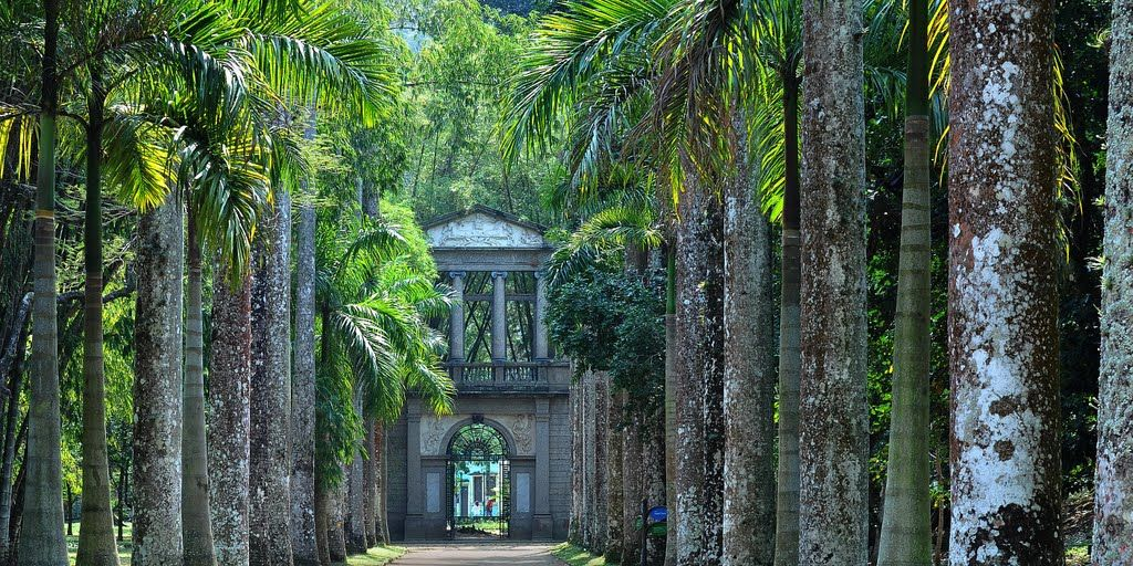 3-jardin-botanique-activites-rio-janeiro-echange-de-maison