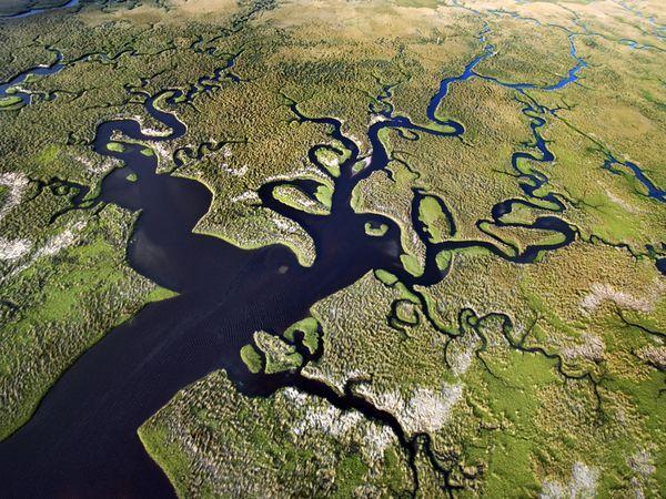 aquatic-florida-everglades_top8-parc-nationaux-etats-unis