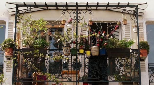 la-cite-des-fleurs--paris-insolite-rues-secretes-echange-de-maisons