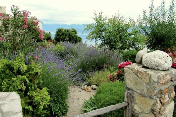 Rayol-jardin-Mediterranee