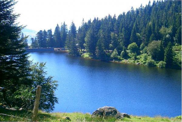 Vosges-lac-de-Longemer