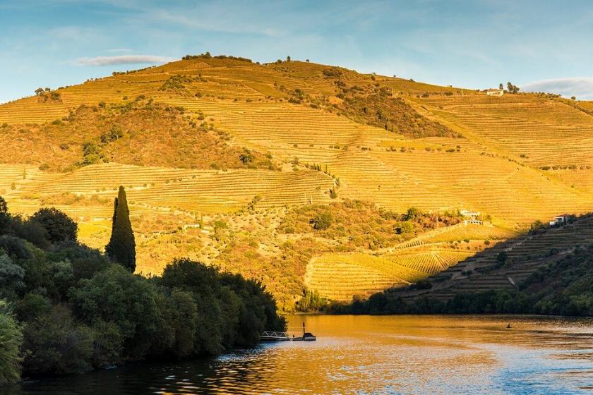 Visiter la Vallée du Douro au Portugal en échange de maison