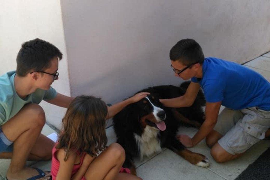 Alt HomeExchange_famille_chien, title HomeExchange_famille_chien