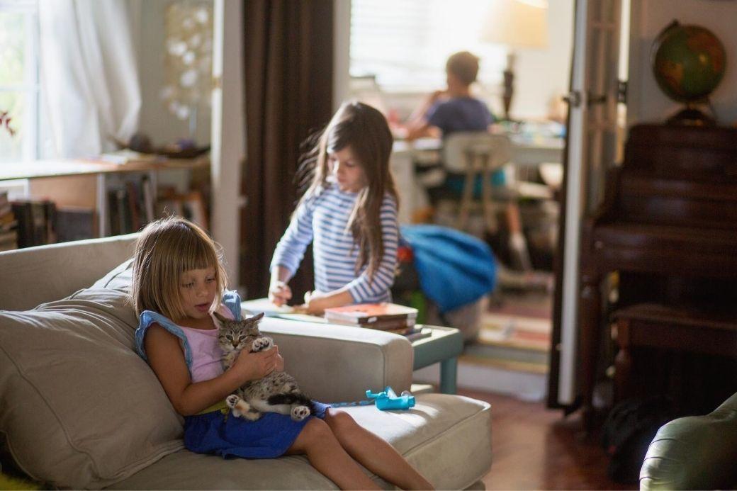Alt HomeExchange_salle-de-sejour_enfants_chat, title HomeExchange_salle-de-sejour_enfants_chat